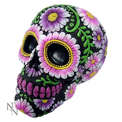 Nemesis Now Sugar Skull Petal Money Box 21.5cm by Nemesis Now