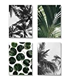 Bild 4erSET / Pflanzen  4x DIN A4 (21cm x 29,7cm). Wanddekoration von MARELLE. Kunstdruck, Fotografie, Wandbild, Wall Ar