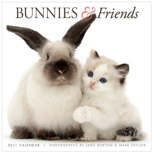 Bunnies & Friends 2011 Calendar (Gladstone Kalender)