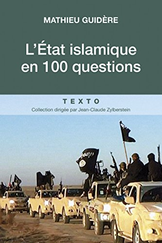 L Etat Islamique En 100 Questions French Edition Ebook Mathieu