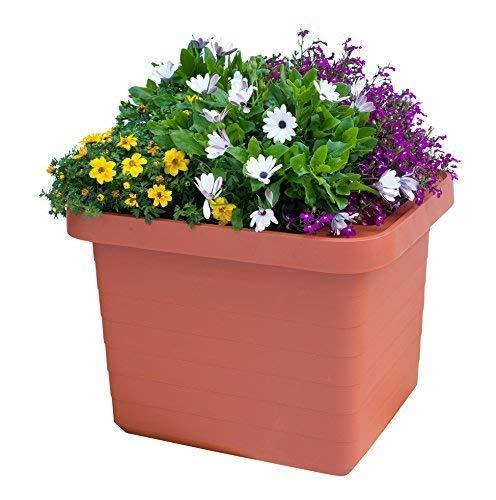 Pot de fleurs Jardinière Bewässerungskasten \