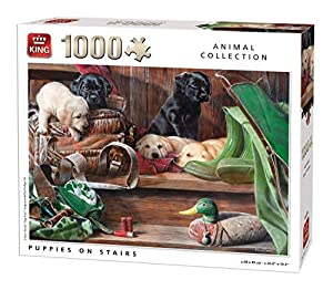 King Animal Collection Puppies On Stairs 1000 pcs Puzzle - Rompecabezas (Puzzle Rompecabezas, Fauna, Adultos, Prodigar, Hombre/Mujer, 8 año(s))