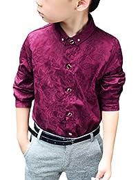 Zhuhaitf Mode Boys Shirts Cotton Mode Children Clothing High Quality School Shirt Boy Shirts Spring Autumn Kids