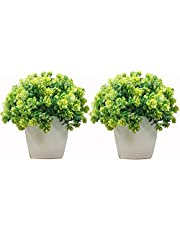 Hyperbole Set of 2 Mini Cute Artificial Plants Bonsai Potted Plastic Faux Green Grass Fake Topiaries Shrubs for Home Decor, Washroom and Office Decor