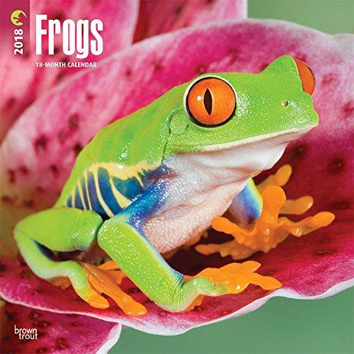 Frogs 2018 Wall Calendar