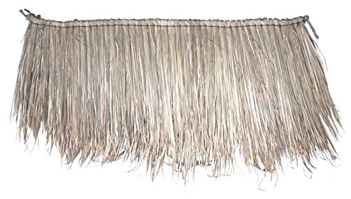 Wohnkult Palm 1000