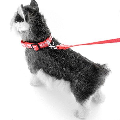 Pegasus Camouflage Nylon Pet Medium Große Hunde Halsband Leine Set Walking führt verstellbar -