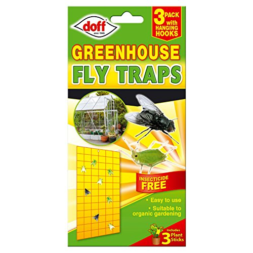doff-greenhouse-insecticide-free-fly-traps-3-pack