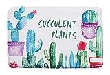 Kreativer einfacher Teppich Schöne Tür Matte, Kaktus