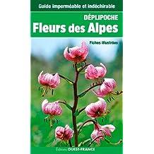 FLEURS DES ALPES (DEPLIPOCHE - carte laminée)