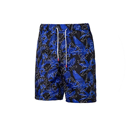 Hot Men's Print Board Shorts Quick Dry Beach Shorts Surfing Beach Wear Floral Short Men Boardshorts,blue-k07,XL -