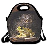 Lunch Bag, Large Lunch Bag, Thermal Big Lunch Bag For Adults, Funny Turtle Frog Nature
