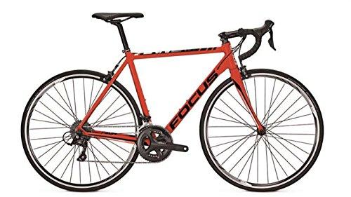 Herren Fahrrad 28 Zoll Rennrad rot - Focus Cayo Al Sora - 18 Gänge Kettenschaltung