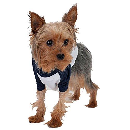 ¾ Sleeve Dog Raglan T-Shirt (bb953) American Apparel Gerippter Halsausschnitt, über Gesperrt Saum Raglan-Ärmel (Superman Outfit Dog)