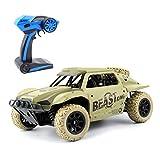 RC Auto 1:18 Maßstab 2,4 GHz Rally Racing Truck Off Road Elektrische High Speed Monster Truck Buggy Rennen 4WD 100 m Entfernung Fahrzeug Spielzeug Radio gesteuert Auto (Gelb)