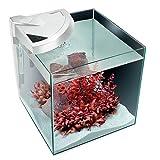 Newa More 20 Acquario Freshwater Completo di Illuminazione a Led Touch 18 l Bianco
