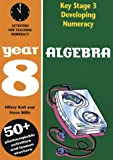 Developing Key Stage 3 Numeracy: Algebra Year 8 (Developing Numeracy)