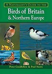 A Naturalist's Guide to the Birds of Britain and Northern Europe (Naturalists' Guides)