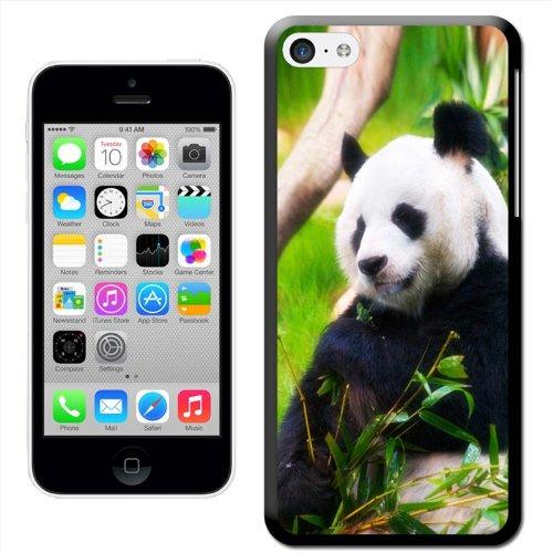 Panda Coque arrière rigide détachable pour Apple iPhone modèles, plastique, Panda Chewing Shoots & Leaves, iPhone 5C Panda Chewing Shoots & Leaves