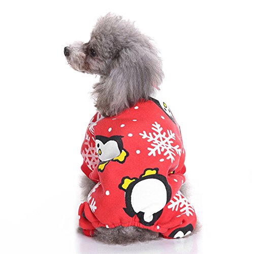 Hund Kostüm Muster bei Kostumeh.de