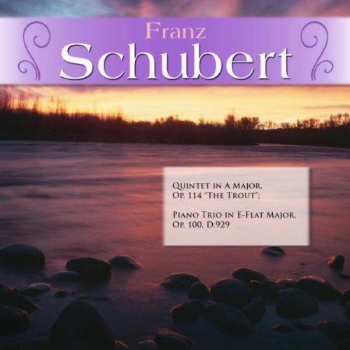 Piano Trio in E-Flat Major, Op. 100, D.929: II. Andante con moto