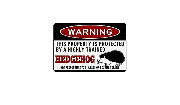 dekoratives Schild Wandschild Igel-Schild lustiges Igel-Zubeh/ör Heckenschwein Warnschild f/ür kleine Haustiere Aluminiumschild Metallschild 20,3 x 30,5 cm Blechschilder f/ür Haus und Hof