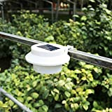 Solar Garden Light 2pcs 3 LED Solar Power Light für Dachrinnen Eaves Zäune fluren Weg …