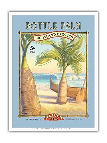 Pacifica Island Art Flaschenpalme -Aloha Samenkörner - Big Island Saatgut-Unternehmen - Die Exoten des Big Island - Vintage Retro Saatpaket von Kerne Erickson - Kunstdruck - 23cm x 31cm