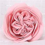 Bureze - Sapone Artificiale Austin a Forma di Fiore Gigante con Rose Ecuador, Decorazione per la casa, per Matrimoni, Natale, Confezione da 16 Pezzi