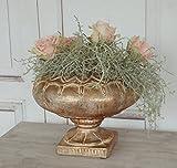Schale VIKTORIA im Shabby Chic antique, Amphore im antiken Landhausstil