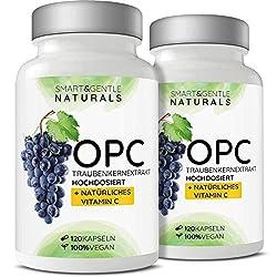 2x OPC Traubenkernextrakt hochdosiert mit natürlichem Vitamin C - 2x 120 OPC Kapseln (8 Monate) mit Acerola, 100% vegan & natürlich, OPC hochdosiert nur eine Kapsel täglich, 95% Wirkstoffanteil
