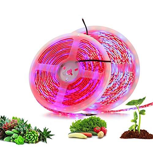 GZRADC LED-Leuchten Mit 12v5050-Pflanzenlichtstreifen Wasserdicht Anwendbar FüR Zimmerpflanzen, Licht, Haushalt, GewäChshaus Usw(5m)