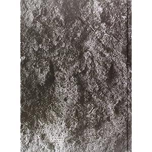 El Celler de Can Roca: el libro