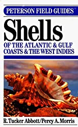 A Field Guide to Shells of the Atlantic and Gulf Coasts and the West Indies (The Peterson Field Guide Series) by Violet F. Morris (1995-04-10)