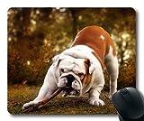 Gaming-Mauspad, EIN halber Hund, Präzisionsnaht, strapazierfähiges Mauspad