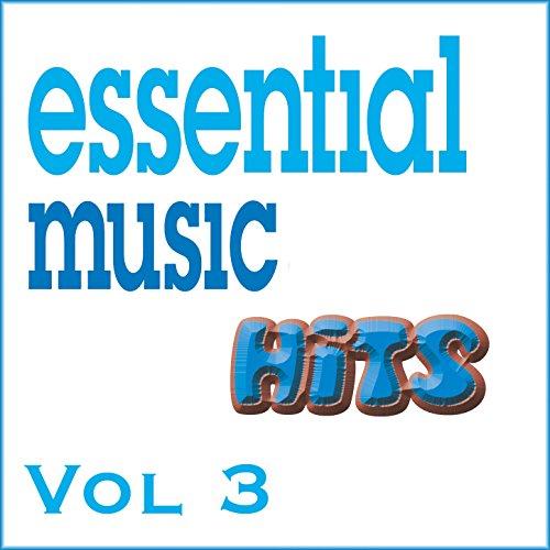 Essential Music Hits Vol 3