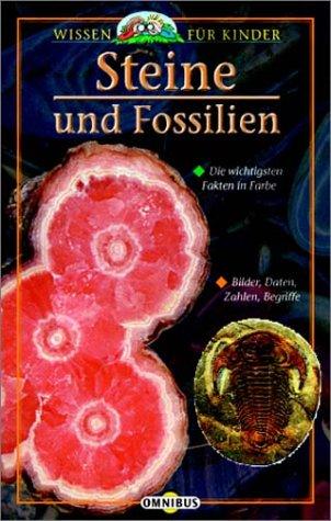 Steine und Fossilien: Wissen für Kinder