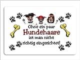 """Fussmatte bedruckt """" Hundehaare"""" Motiv Fußmatte Schmutzmatte Türabstreifer Türmatte Fußabstreifer"""