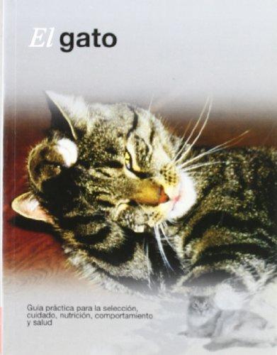 El gato (Mascotas)