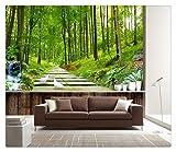 Fototapete Dekor Wallpaper Fototapete Natur Landschaft Wald Tapete Wandbild Eingang Fernseher Hintergrund Wohnzimmer Flur 3D Stereo Wandbild, 400Cmx280Cm