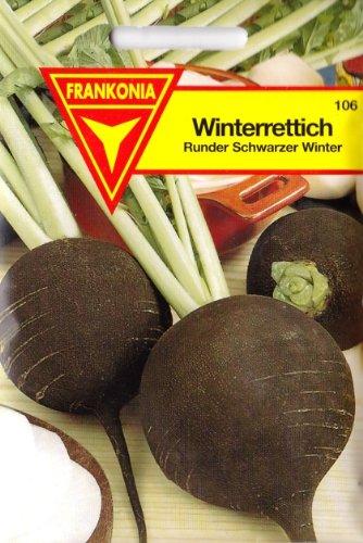 Winterrettich, Rettich, Runder Schwarzer Winter, Samen für ca. 4 lfm.