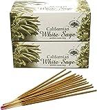 Encens Green Tree - White Sage - Sauge Blanche - lot de 24 boites