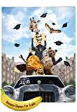 """J6269ATTG Jumbo Going Wild Greeting Card: Zoo Graduation Featuring a Graduating Class of Zoo Animals in a Limo, with Envelope (Giant Size: 8.5"""" x 11"""")"""