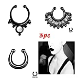 #6: nose ring without piercing Septum-Clip-On-Fake-Nose-Ring-Clicker