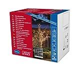 Konstsmide 2376-000 Microlight Lichterkette/für Außen (IP44) / 24V Außentrafo/verschweißt / 160 klare Birnen/schwarzes Kabel