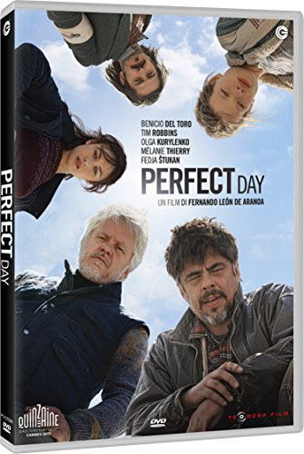 DVD PERFECT DAY