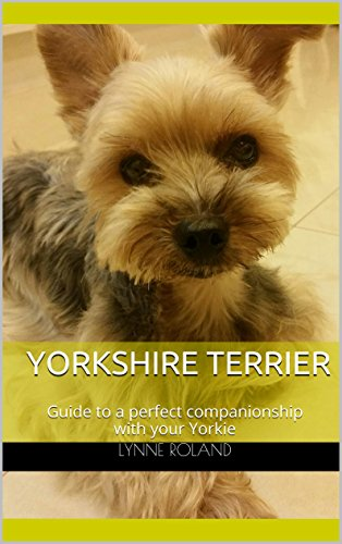 Yorkshire Terrier: Guide to a perfect companionship with your Yorkie (English Edition)