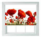 Red Poppys Various Sizes Black Out Roller Blinds for Bedrooms Bathrooms Kitchens and Caravans AOA® (poppy 4ft)