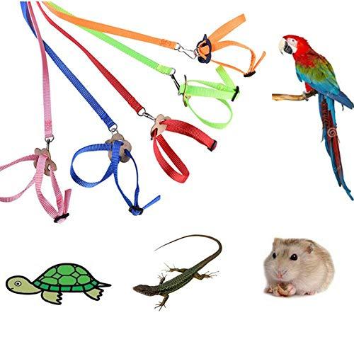 Morningtime Vogel Leine Verstellbares Vogel Geschirr Bequeme Harness Seil Haustier Leine für Papagei Nymphensittich-Reptil für Vögel, Papageien, Graupapageien (1 Stück, zufällige Farbe) -