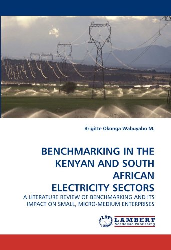 BENCHMARKING IN THE KENYAN AND SOUTH AFRICAN ELECTRICITY SECTORS: A LITERATURE REVIEW OF BENCHMARKING AND ITS IMPACT ON SMALL, MICRO-MEDIUM ENTERPRISES
